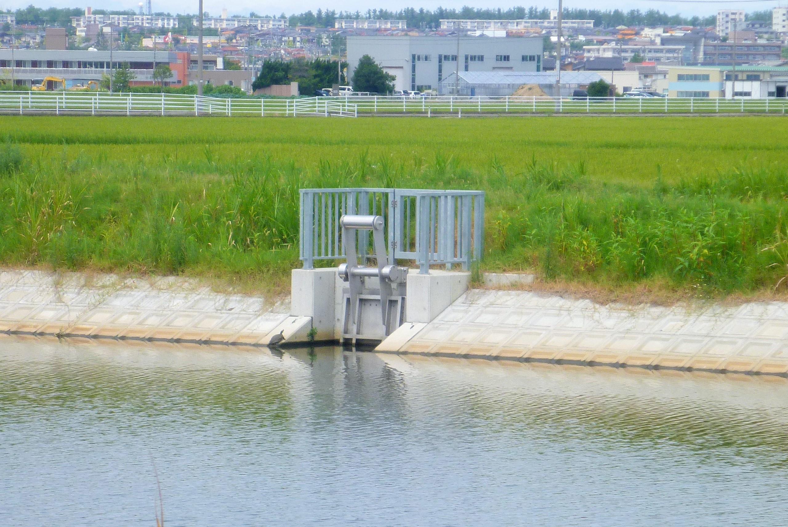 都市基盤河川大宮川改修に伴う樋管実施設計業務委託