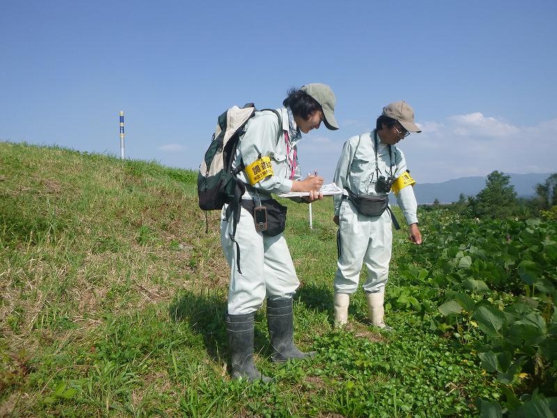 手取川・梯川水辺現地調査(植物)外業務