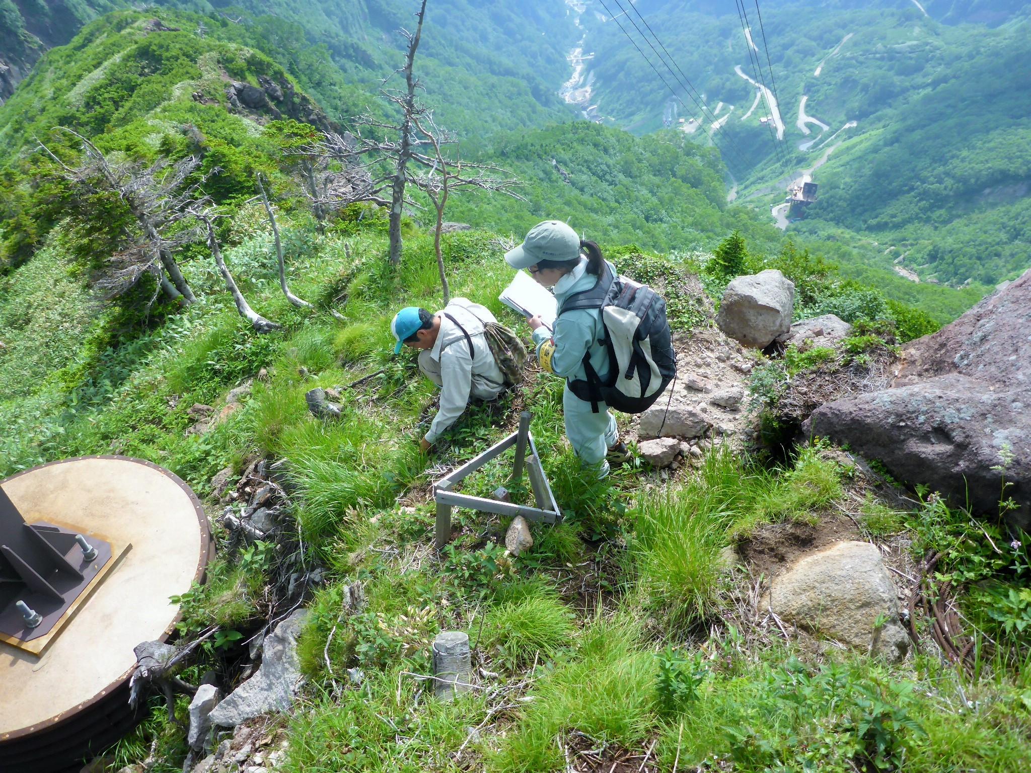 白山砂防管内自然環境調査業務